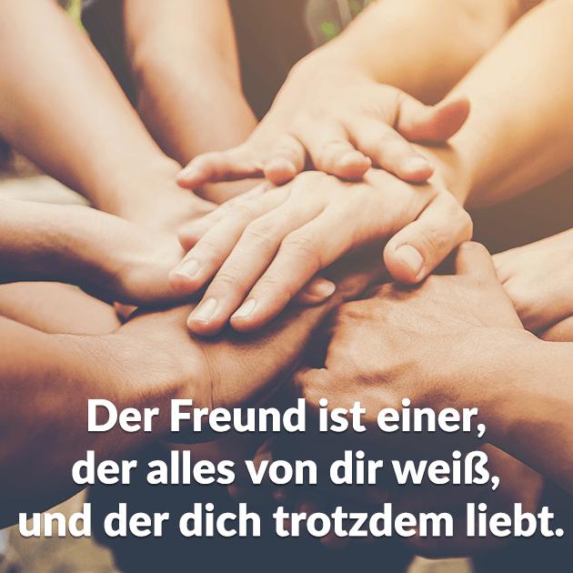 Freundschaft 5