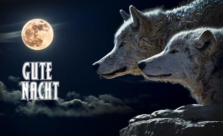 gute nacht  wunderbare bilder