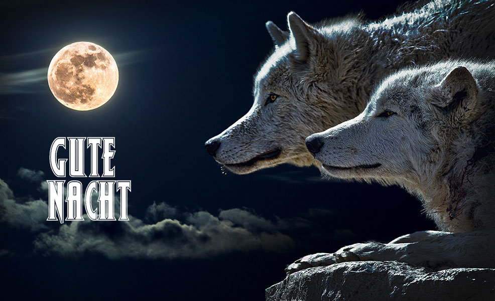 Gute Nacht Wölfe