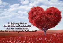 Spruche-Zur-Hochzeit-3
