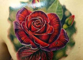 Tattoo Rose Rücken 11