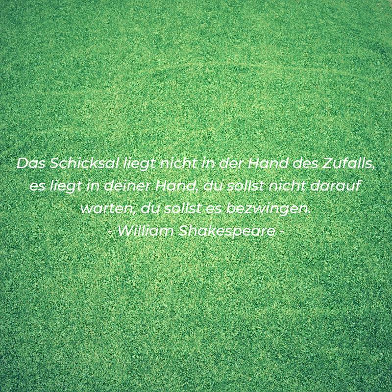 zitate_von_shakespeare_2