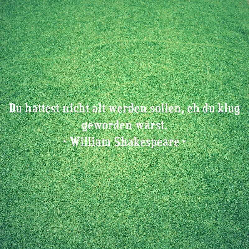 Zitate_von_Shakespeare_9