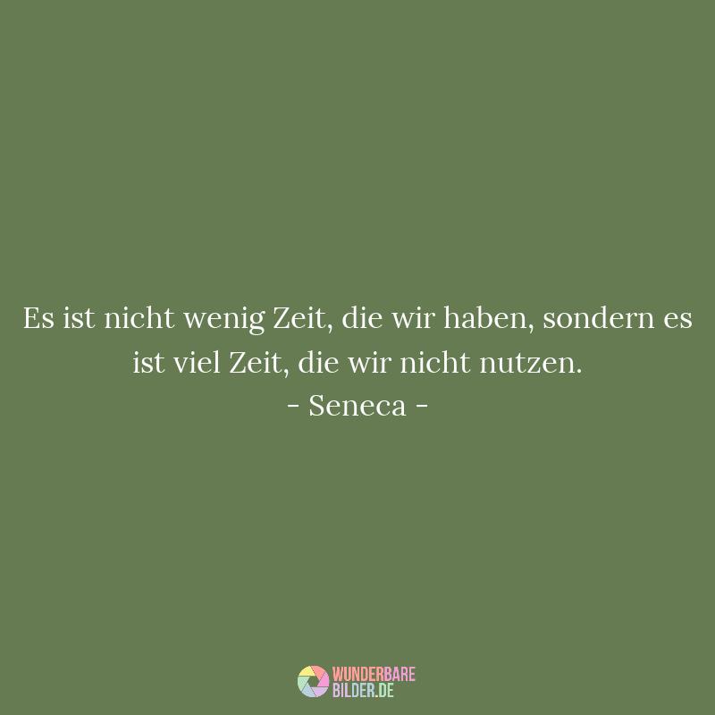 Besten_Zitate_19