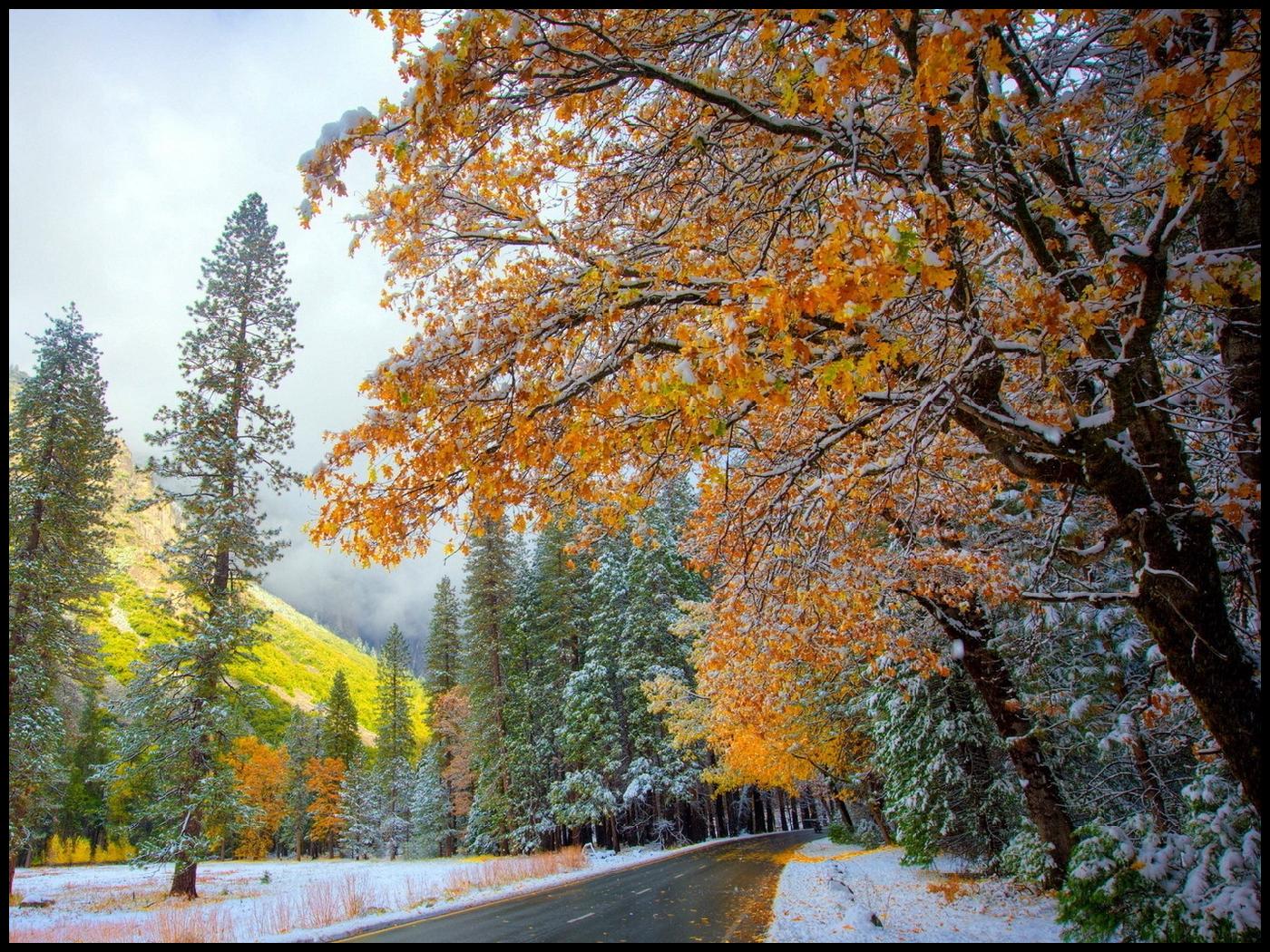 Herbst_Bilder_13