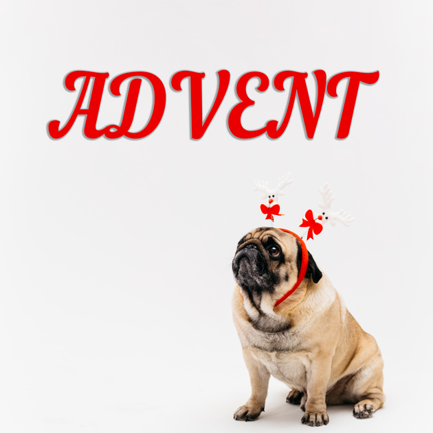 Advent Lustig